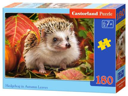 Пазлы B7-018338 Ежик, 180 деталей Castor Land
