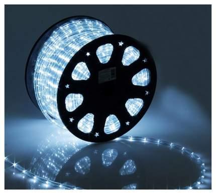 Дюралайт XMAS-GROUP DL-LED-100-3W Холодный белый