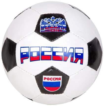 Футбольный мяч Minsa Россия №5 white/black