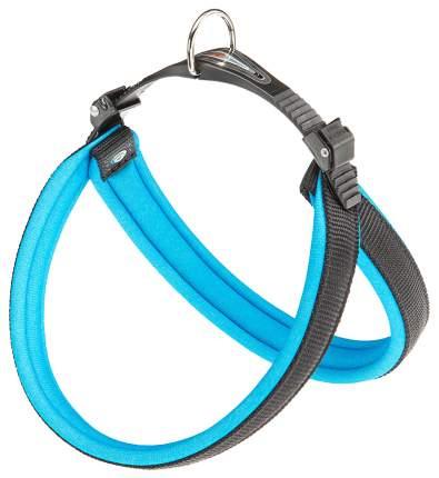 Шлейка для собак Ferplast Agila Fluo  (A=B 57/65см 25мм, Синий)