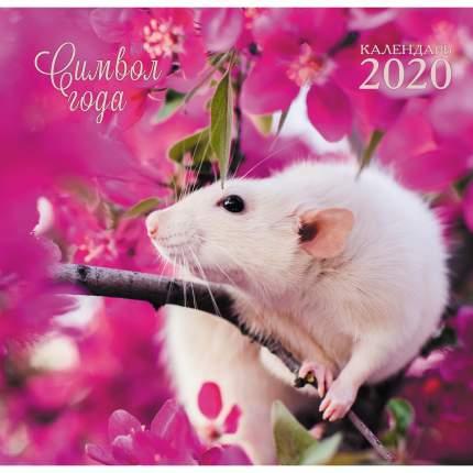 Календарь одноблочный 2020 Символ года. Дизайн 2, КПКС2002