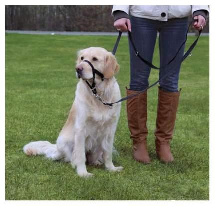 Намордник для собак TRIXIE для собак тренировочный L-XL 37 см длина поводка 48-60 см