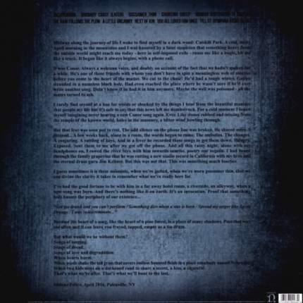 Виниловая пластинка Conor Oberst Ruminations (LP)