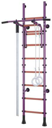 Детский спортивный комплекс Polini Sport Turbo Фиолетовый пристенный