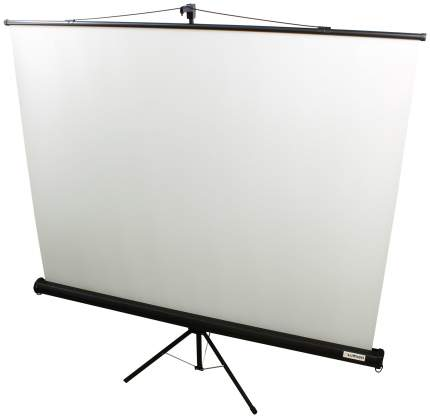 Экран для видеопроектора Lumien Eco View LEV-100101 Белый