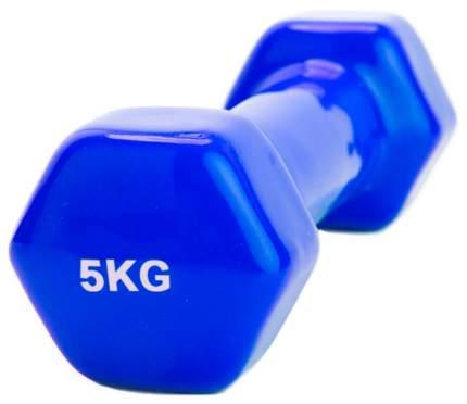 Гантель неразборная обрезиненная Bradex SF 0168 5 кг синяя