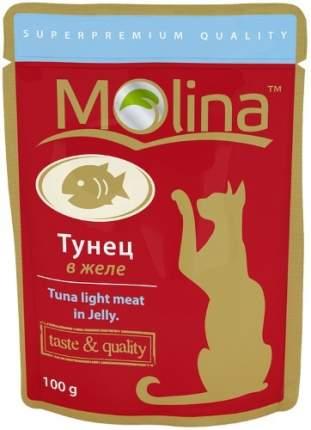 Влажный корм для кошек Molina, рыба, 24шт, 100г