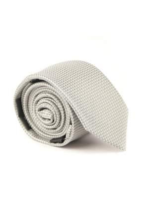 Галстук мужской Digel 1159002/44 серый
