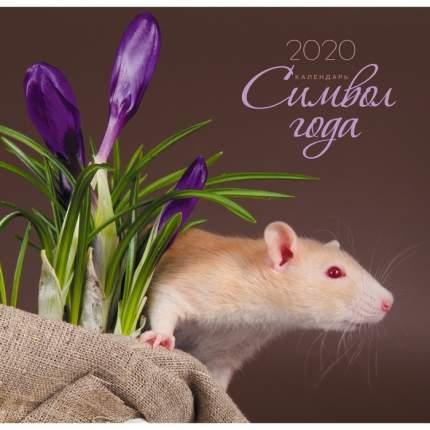 Календарь одноблочный 2020 Символ года. Дизайн 3, КПКС2003