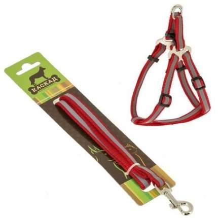 Комплект Поводок и шлейка Каскад нейлон светоотражающий красный для собак 120см + 30/50см