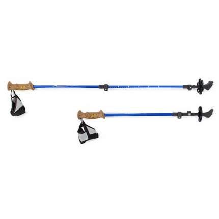 Палки для скандинавской ходьбы Larsen Extreme 70-140 см