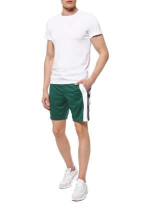 Шорты мужские Tommy Hilfiger MW0MW08733 зеленые XL