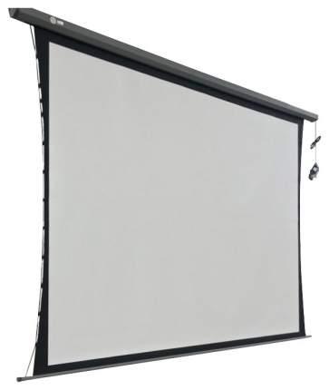 Экран для видеопроектора Cactus Professional Tension Motoscreen CS-PSPMT-168x299 Белый