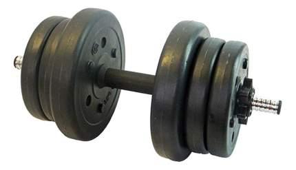 Гантель разборная Lite Weights 3103CD 25,4 мм, 10 кг