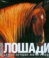 Книга Лошади, Самые лучшие фотографии