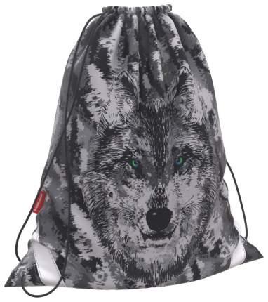 Мешок для обуви ErichKrause 365x440мм Wolf