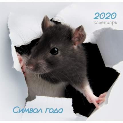 Календарь одноблочный 2020 Символ года. Дизайн 4, КПКС2004