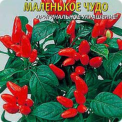 Семена Перец острый декоративный Маленькое чудо, 0,1 г, Плазмас