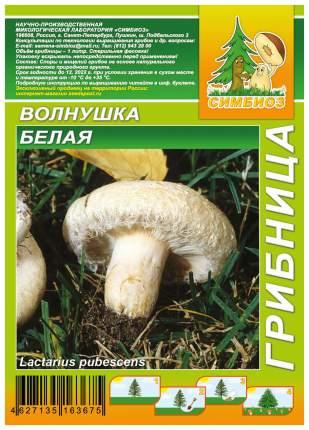 Мицелий грибов Грибница субстрат микоризный Волнушка Белая, 1 л Симбиоз