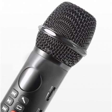 Микрофон-караоке SDRD l-598 черный