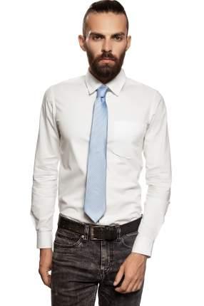 Классический галстук Искушение с модным принтом Signature 204423 голубой