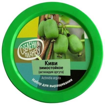Набор для выращивания Вырасти, дерево! zk-095 Киви зимостойкое