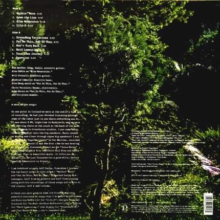 Виниловая пластинка Sam Amidon Lily-O (LP)