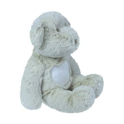 Мягкая игрушка Teddykompaniet мишка Тедди серый, 19 см,1551