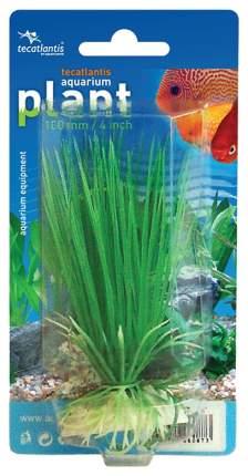 Искусственное растение Tecatlantis 10см