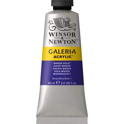 Акриловая краска Winsor&Newton Galeria винзор фиолетовый 60 мл