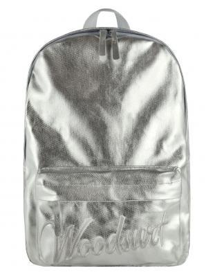 Рюкзак /WOODSURF/ EXPRESS Academy, коллекция NIGHT LIFE , канвас, моно металлик серебряный