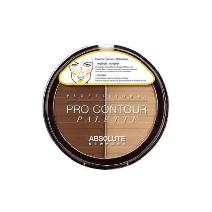 Контурирующая палетка Absolute New York Pro Contour Palette 03