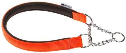 Ошейник для собак Trixie DAYTONA CSS 40 см х 1,5 см красный 75234012