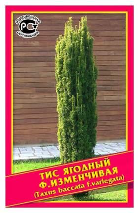 Семена Тис Ягодный Ф, Изменчивая, 0,2 г  Симбиоз