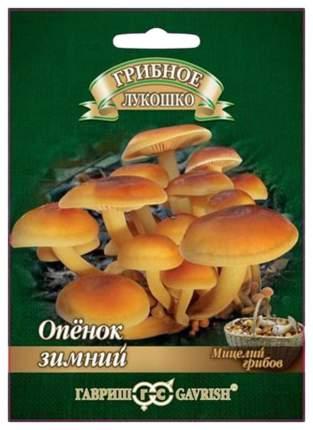 Мицелий грибов Гриб Опенок Зимний на древесной палочке, 12 шт, Гавриш
