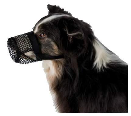 Намордник Trixie защита от отравлений для собак (18-26 см)