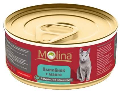 Консервы для кошек Molina с цыпленоком с манго 80 г