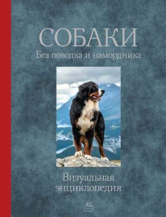 Собак и Без поводка и намордника