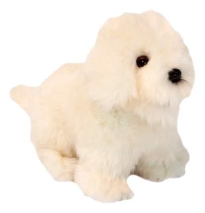 Мягкая игрушка Hansa Собака Породы Бишон Фризе 30 см белый 6317