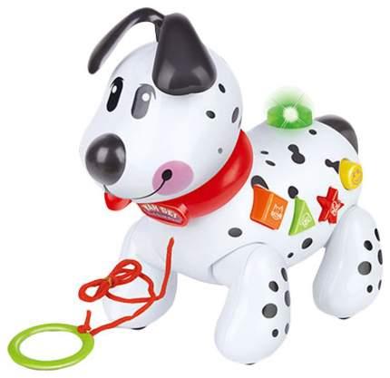 Интерактивная игрушка Shantou Gepai Щенок на веревочке B449323