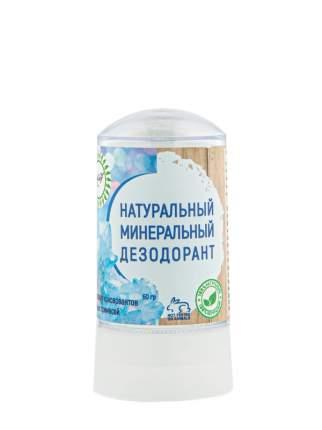 Дезодорант для тела Nice day 60 гр