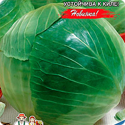 Семена Капуста белокочанная Мечта, 0,3 г, Уральский дачник