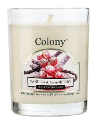 Свеча ароматическая Клюква в сахаре Colony CH3675 Белый
