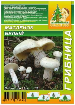Мицелий грибов Грибница субстрат микоризный Масленок Белый, 1 л Симбиоз