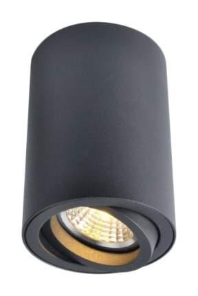 Потолочный светильник ARTE LAMP Sentry A1560PL-1BK