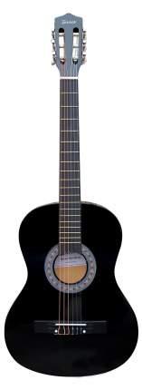 Акустическая гитара TERRIS TF-3802A BK