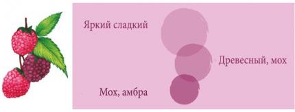 Диффузоры 2 шт Cristalinas 10110811