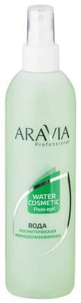 Косметическая вода Aravia professional с мятой и витаминами 300 мл