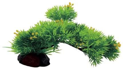 Композиция из искусственных растений ArtUniq Riccia on stick