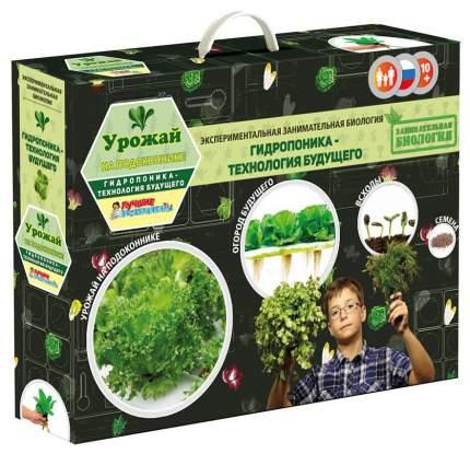 """Экспериментальная занимательная биология Bumbaram """"Урожай на подоконнике"""""""